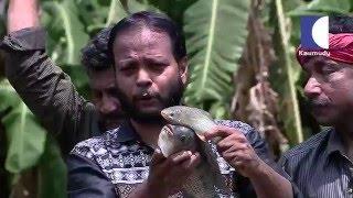 A walk to Summer Land Farm in kerala india   HARITHAM SUNDHARAM 18 03 2016 Part 02   Kaumudy TV