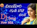 Chilukuri Gudi Kada chilaka | Private Dj Songs | Dj Songs | Telangana Folk Songs | New Folk Dj Songs