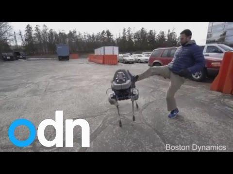 Watch robot dog 'Spot' run, walk...and get kicked