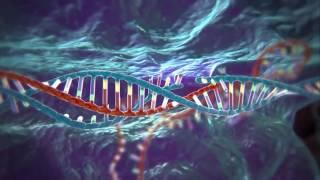"""CRISPR-Cas, il kit """"taglia e cuci"""" per modificare il genoma   Carla Portulano   TEDxCesena"""