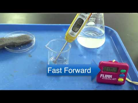 Simple Exothermic Reaction