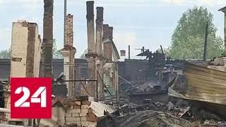 Площадь лесных пожаров в Сибири за сутки возросла в 4 раза