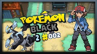 Pokemon Black 2 Episode 2: Floccesy Town and Route 19!