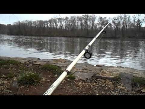 Bank  Fishing From  Schuylkill River For Catfish And Carp