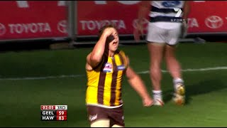 AFL 2008: Grand Final - Hawthorn highlights vs. Geelong
