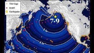 Alaska Quake 7.9 MAG - Tsunami Warning Cancelled - Deadly Mount Moto-Shirane Kusatsu