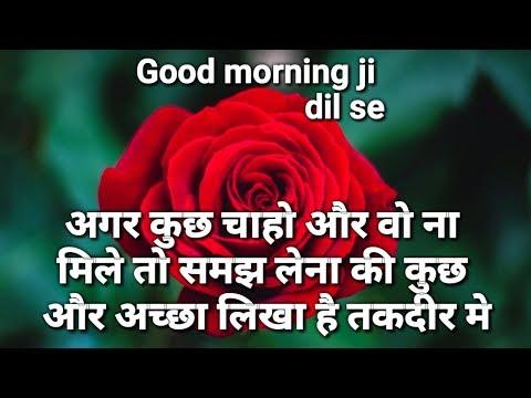 Good Morning Love Shayari Images💕💕 | Morning Shayari | Love Status Messege,