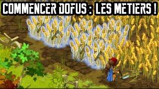 [Dofus] Commencer Dofus : Les Métiers !