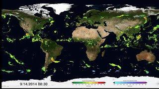 First Time Ever: Detailed Worldwide View Of Falling Rain & Snow