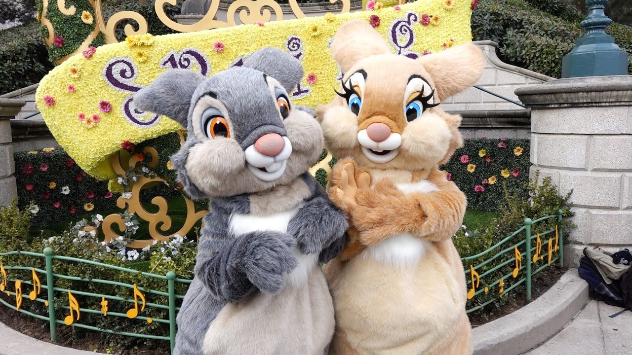 thumper and miss bunny swing into spring 2015 at disneyland paris youtube. Black Bedroom Furniture Sets. Home Design Ideas