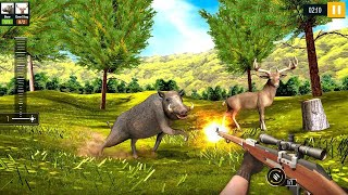 Wild Animal Hunting 2020 Free Android Gameplay screenshot 3