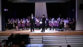Sibelius - Sången om korsspindeln