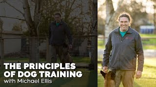 The Principles Of Dog Training With Michael Ellis