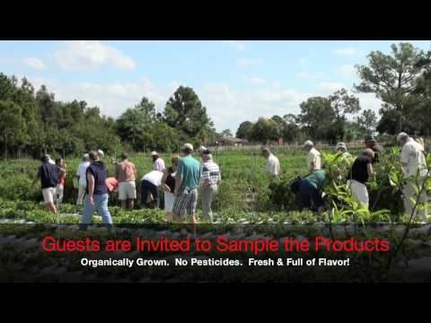Agriculture Tour 2011.mov