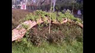 Aur Bhala Kya Maangu Main Rab Se Pakpattan 03006944015