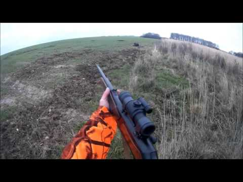 Battue Exceptionnel Aux Sangliers, 4 Sangliers Tuer Au Même Poste!! 4 Wild Boar , Browning Maral