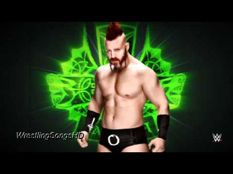2015: Sheamus 4th & New WWE Theme Song -