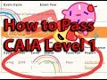 How I passed CAIA level 1. What I'd do differently