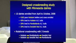 Les Hansen on crossbreeding: Video footage from 2013 World Ag Expo