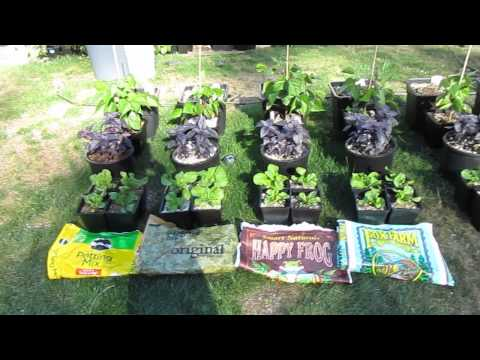 Ocean Forest vs. Happy Frog vs Roots Organic vs. Miracle Gro ( Update 2)