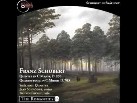 Schubert: String Quintet in C major, D. 956 - (II) Adagio