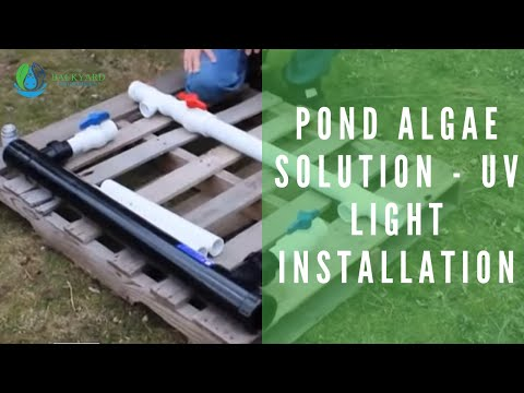 Pond Algae Solution -  UV Light Installation