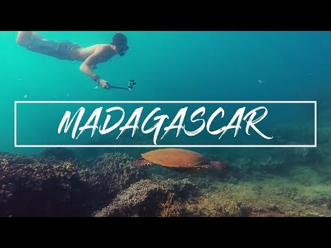 A Madagascan Adventure || Operation Wallacea