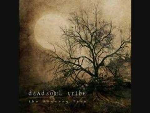 Dead soul tribe- Spiders and flies