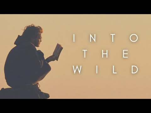 The Beauty Of Into The Wild