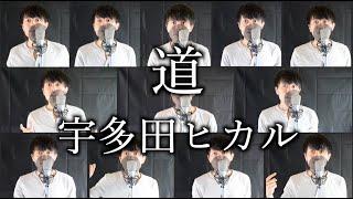 Gambar cover 道/宇多田ヒカル(michi/UtadaHikaru) 【多録Cover】