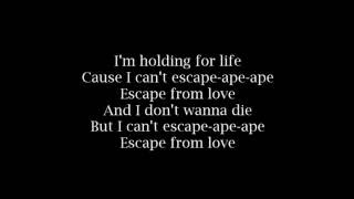 Eva Simons & Sidney Samson - Escape From Love Lyrics