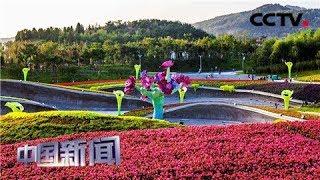 [中国新闻] 媒体焦点:世园会彰显中国软实力 英媒:花朵的力量 | CCTV中文国际