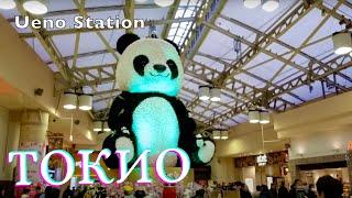 ТОКИО. МУЗЕЙ ЦИФРОВОГО ИСКУССТВА TEAM LAB   ( 1080p HD) ЯПОНИЯ: ПУТЕШЕСТВИЕ #8 / Видео