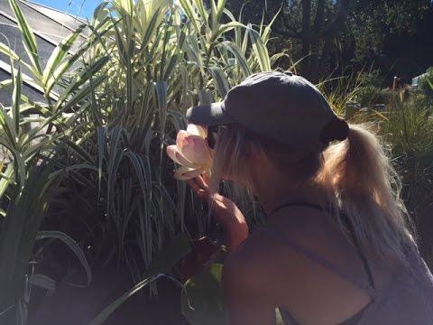 Vegan Girls Explore Berkeley: Vlog