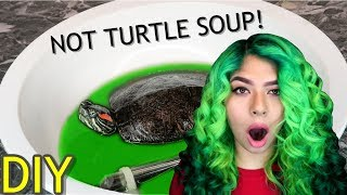 veggie-soak-for-turtles-tortoises-giveaway