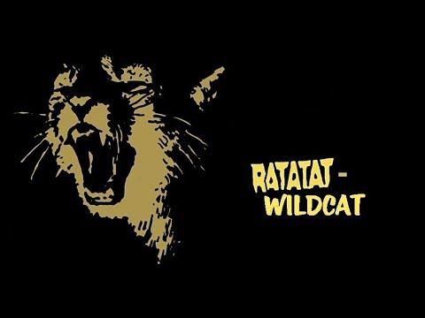 Ratatat  WildCat 1 hour version