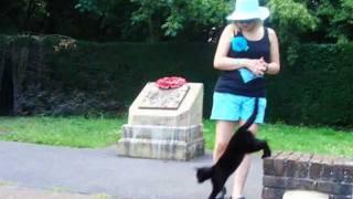 الجنس الثالث بشير يبكي على القطه السوداء.