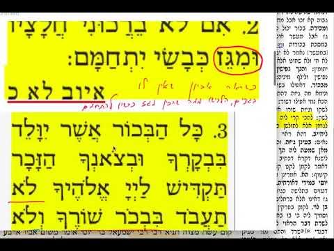 חולין קלז 137 שבת ח׳ ניסן התשעט שמואל נבון Daf yomi Chullin daf 136 קלז. Shmuel Navon