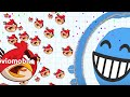 Agario Funny Moment - Feature Angry Birds Skin