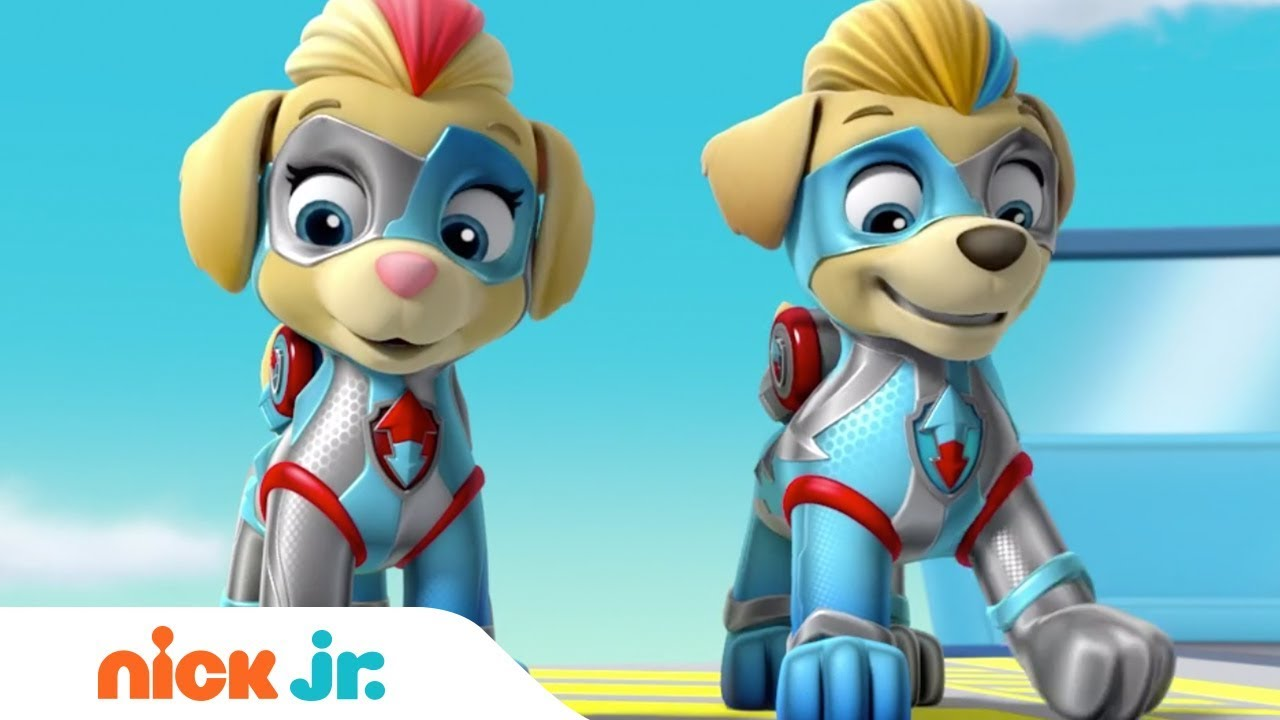 The Mighty Twins In Action 🐶🐶 PAW Patrol | Nick Jr