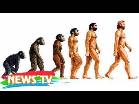 Xem nhanh quá trình mặt người tiến hóa dài 6 triệu năm chỉ trong 1 phút