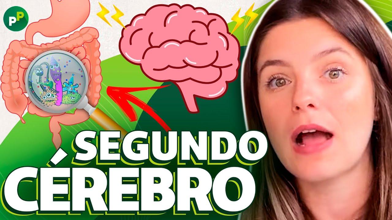 TODAS AS FUNÇÕES INTERLIGADAS AO INTESTINO! | Thaisa Leal