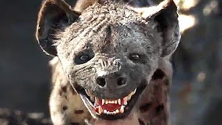 "THE LION KING ""Hyena Gang"" Trailer (2019)"