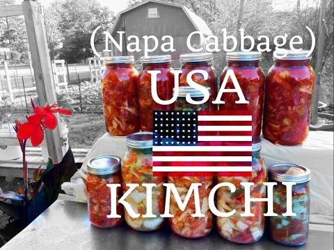HD USA KIMCHI  (Napa Cabbage) - Easy | Lacto Fermentation  |  Sweet Smelling |  Delicious