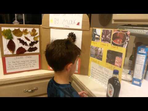 Max lane school project