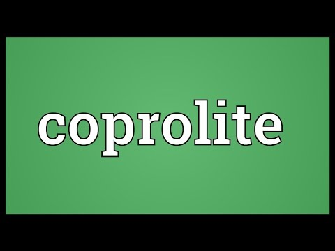 Coprolite Meaning