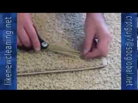 Sarasota Carpet Cleaning Get Rid Of Green Slime And Hard Residue