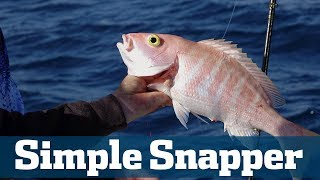 Simple Snapper - Florida Sport Fishing TV