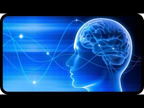 Innerer Stress durch Elektrosmog - was tun?