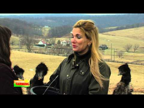 Martha Boneta and Protecting Small Farmers